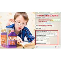 Jus Caliph Kids Expert 350ml